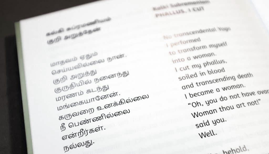 Hijra_Fantastik_book31
